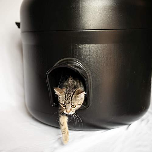 The Kitty Tube