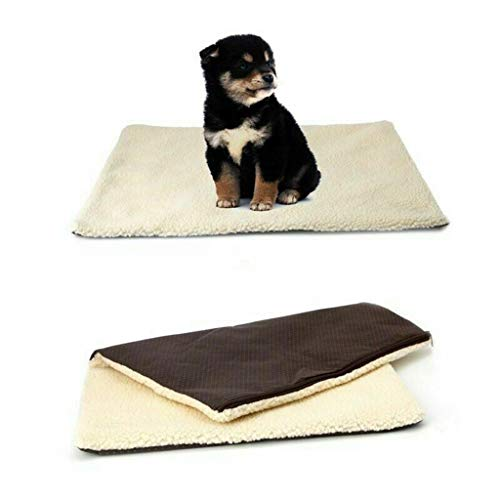 Atezch self-heating dog blanket