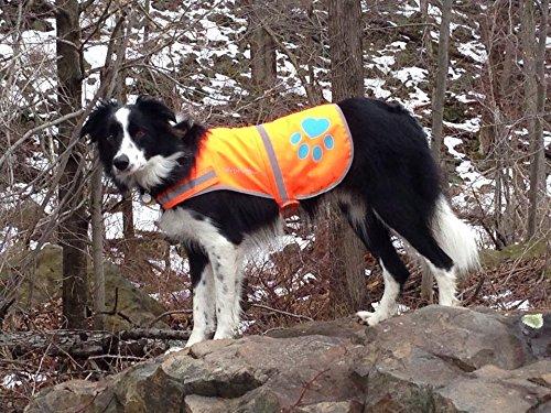 SafetyPup XD reflective dog vest for winter safety