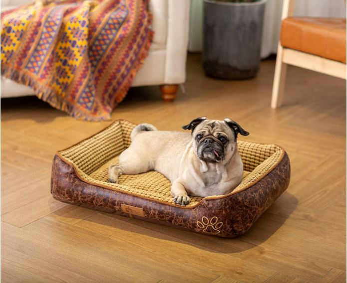 Small Cheap Dog Bed