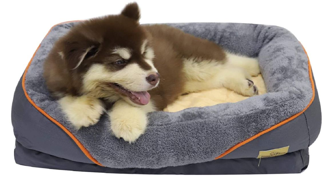 Puppy sleeping in dog bed
