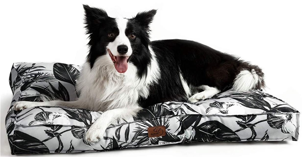 Collie dog sitting on waterproof dog mattress