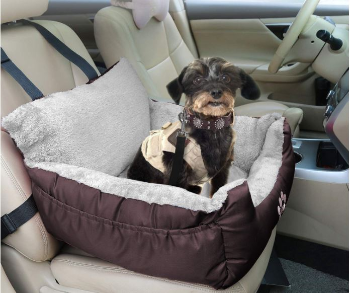Dog sitting in car with special dog seat