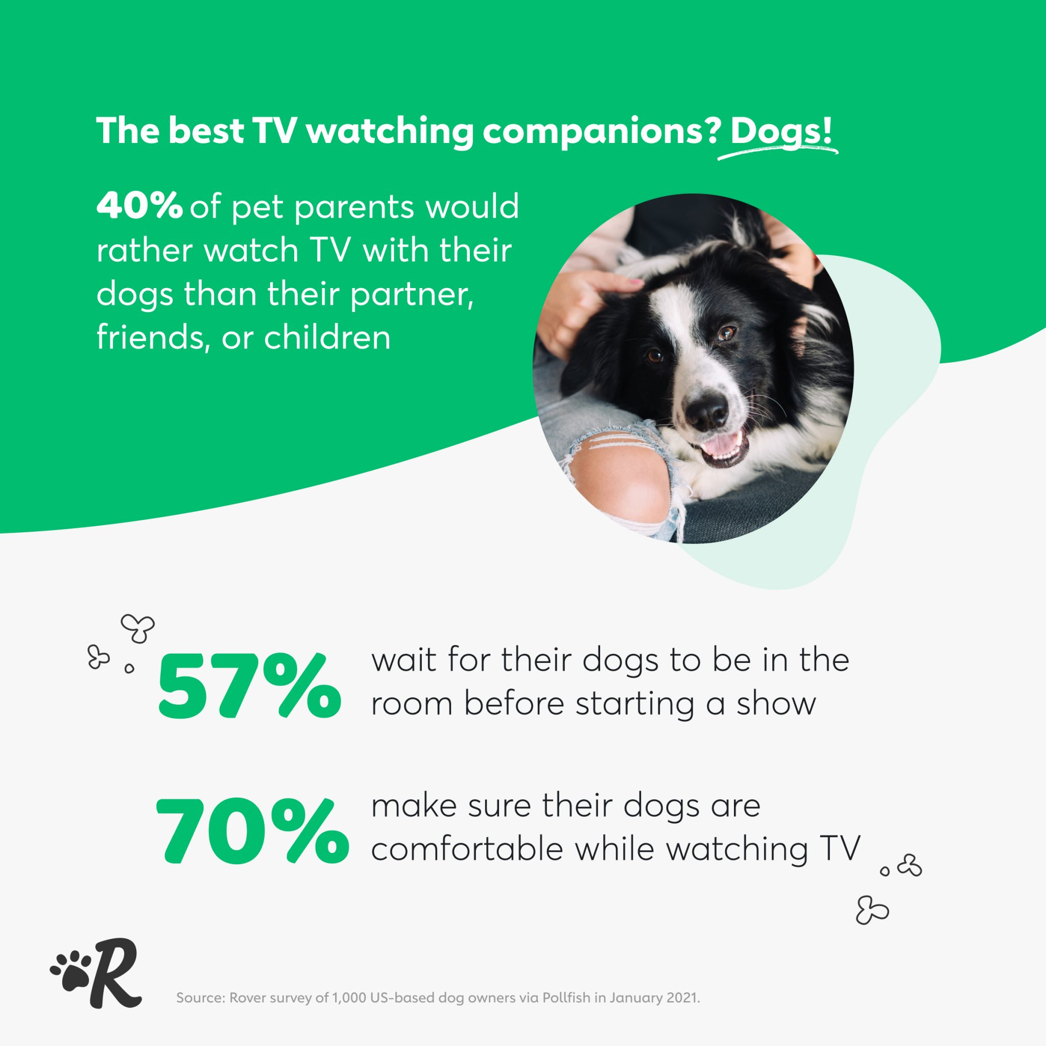 Infographic of survey data: 57% of dog owners wait for their dogs to be in the room before starting a show