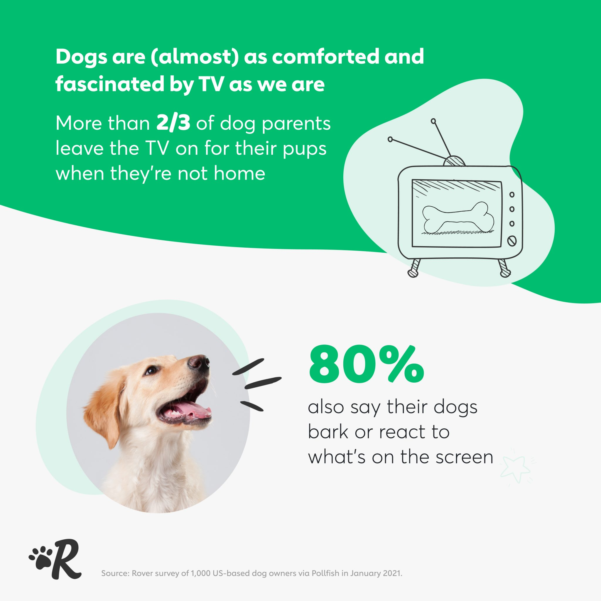 Infographic of survey data: 80% of dog owners claim their pet responds to what is happening on tv