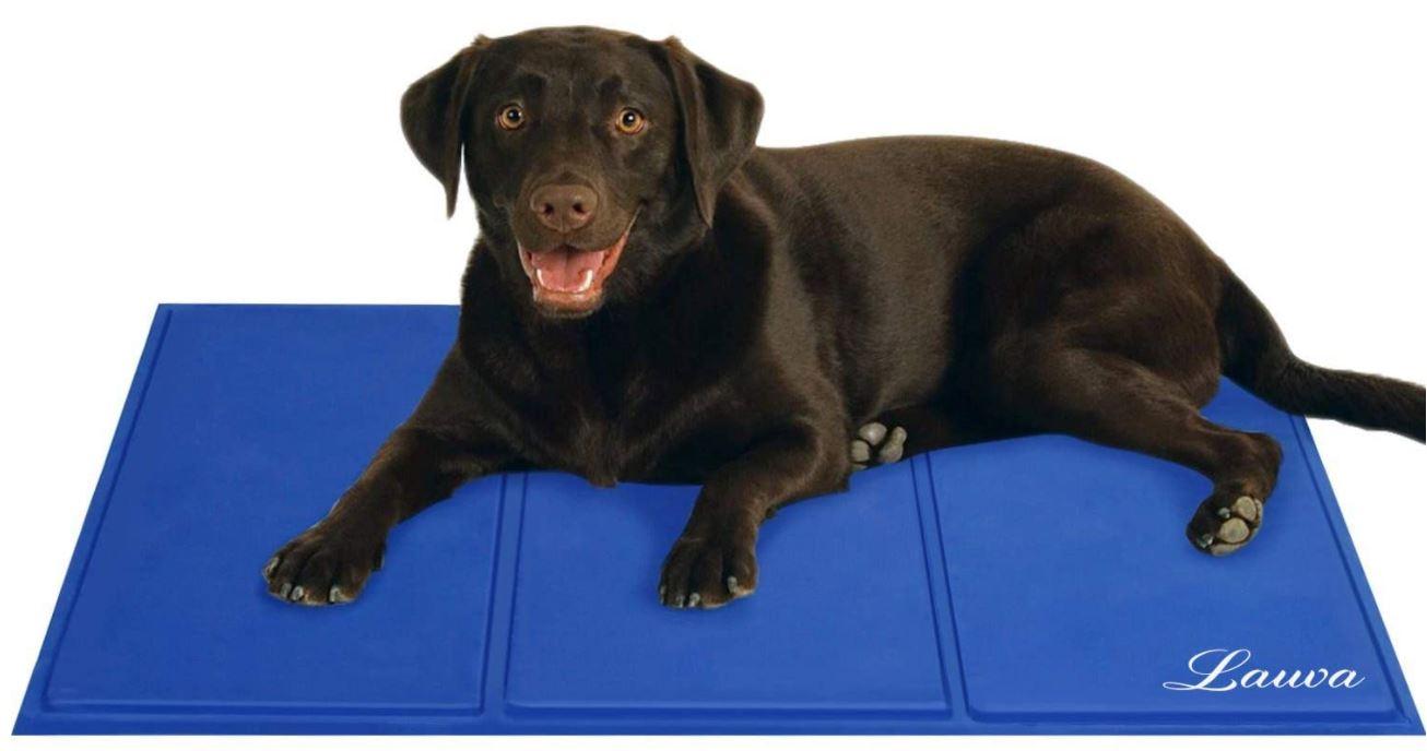 Cheap Dog Bed Cooling Mattress