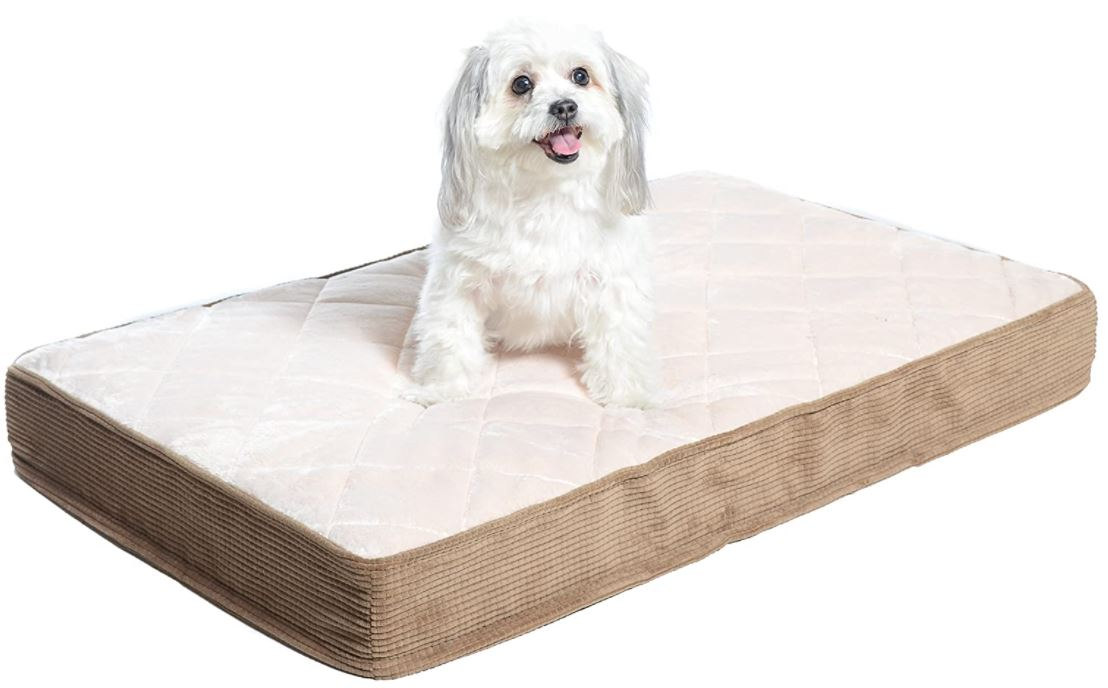 Cream Cheap Dog Bed