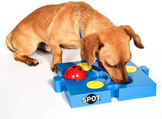 Product image for the SPOT Seek-a-Treat Flip 'N Slide