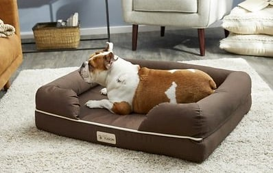 PetFusion Ultimate Lounge Orthopedic Dog Bed