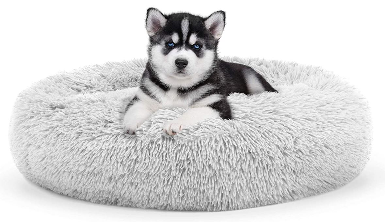 Cheap Doughnut Dog Bed