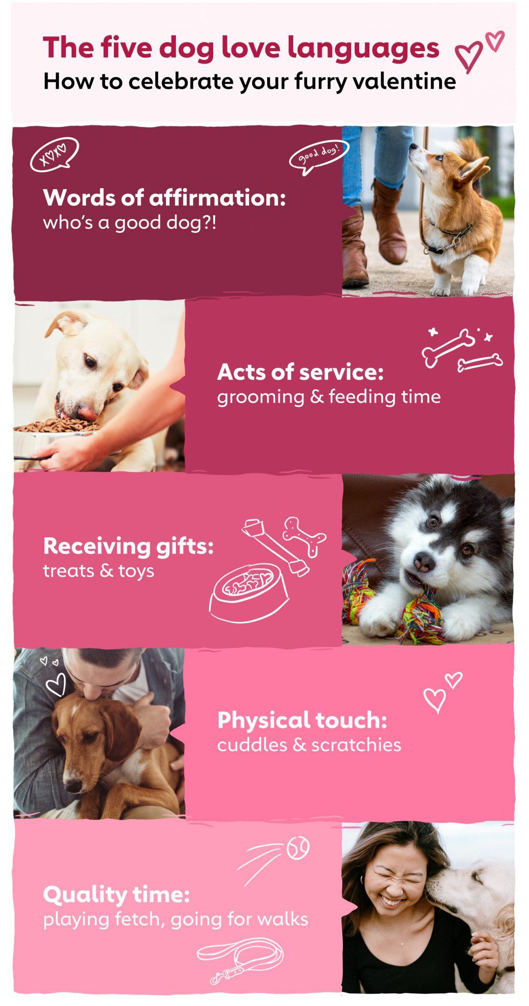 five dog love language