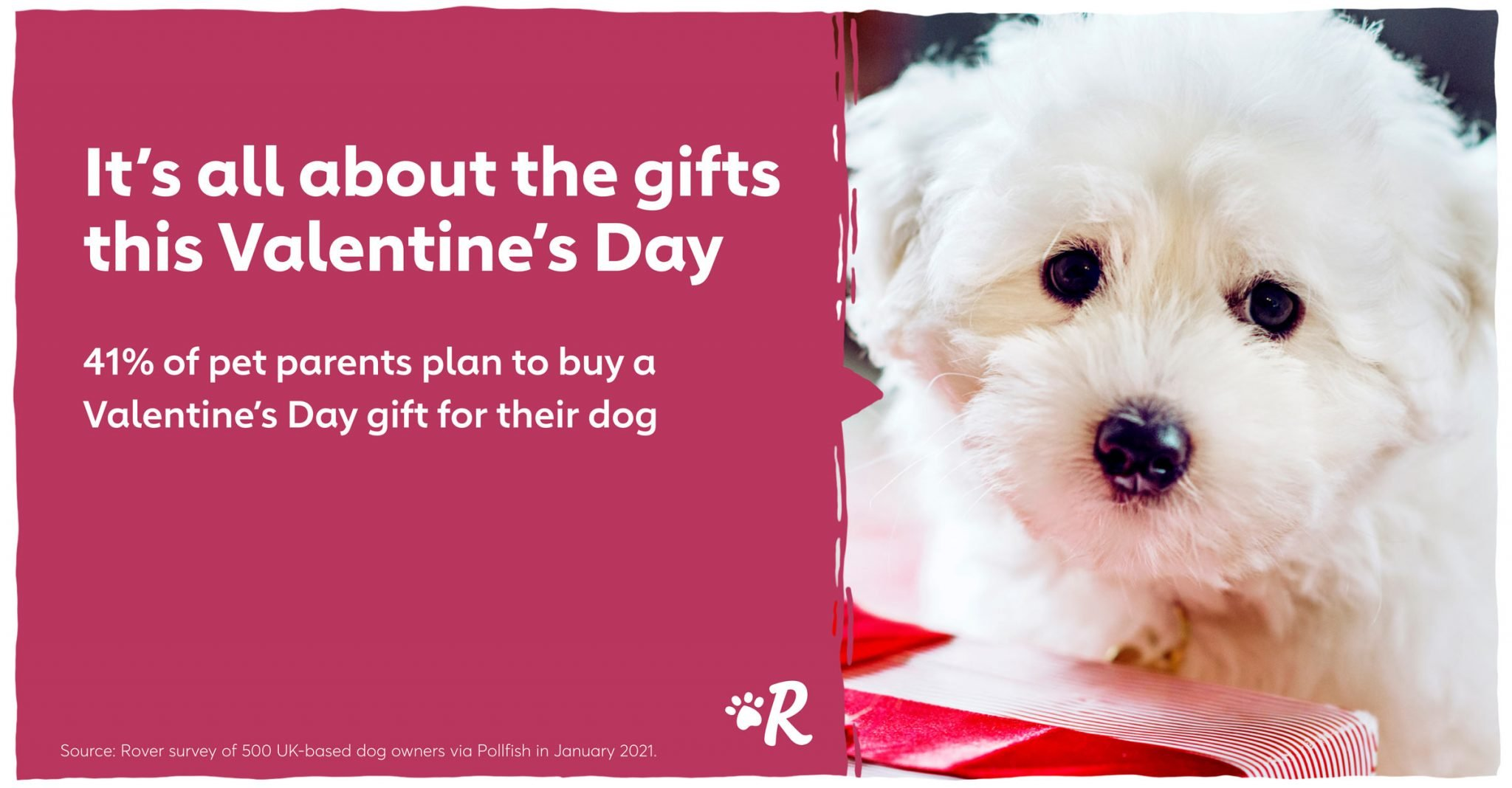 valentines day gift for dog