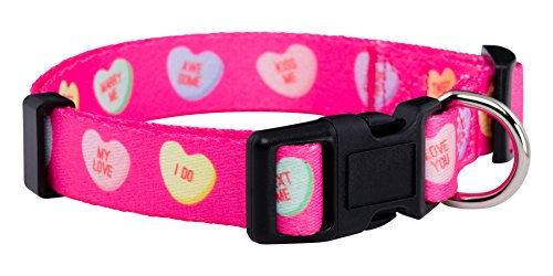 Valentine's Day candy heart print dog collar