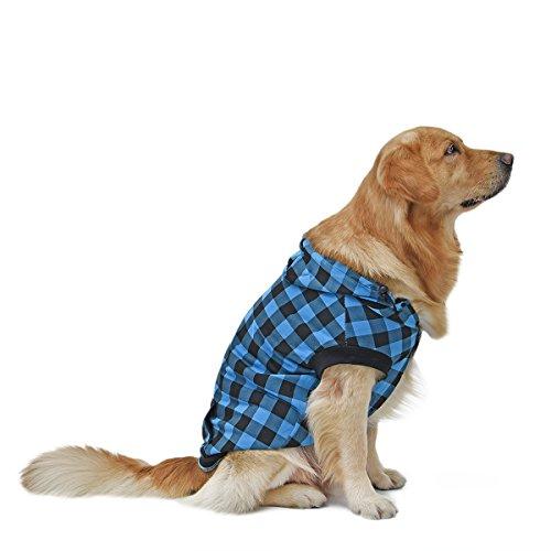 Pawz Road plaid dog hoodie