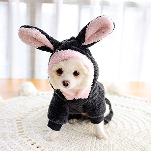 SweetPetGarden small dog bunny hoodie