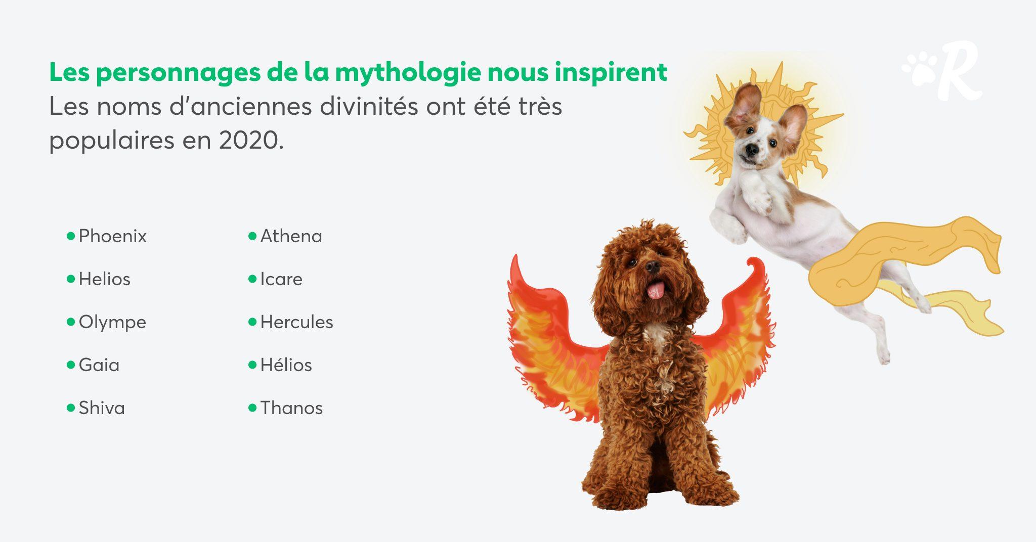 noms de chien mythologie