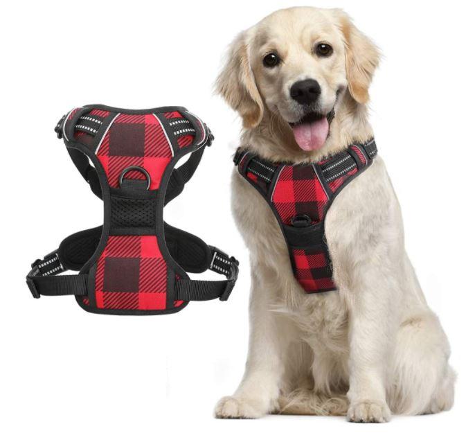 Harness for Huskies Rabbitgoo