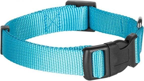 Blueberry Pet Classic Solid Nylon Dog Collar