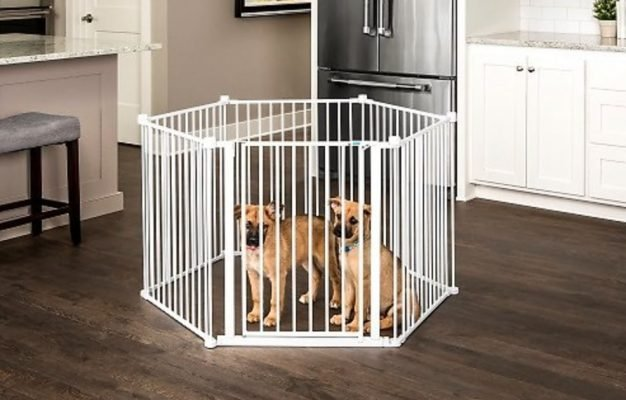 Carlson Pet Products Convertible Wire Dog Pen