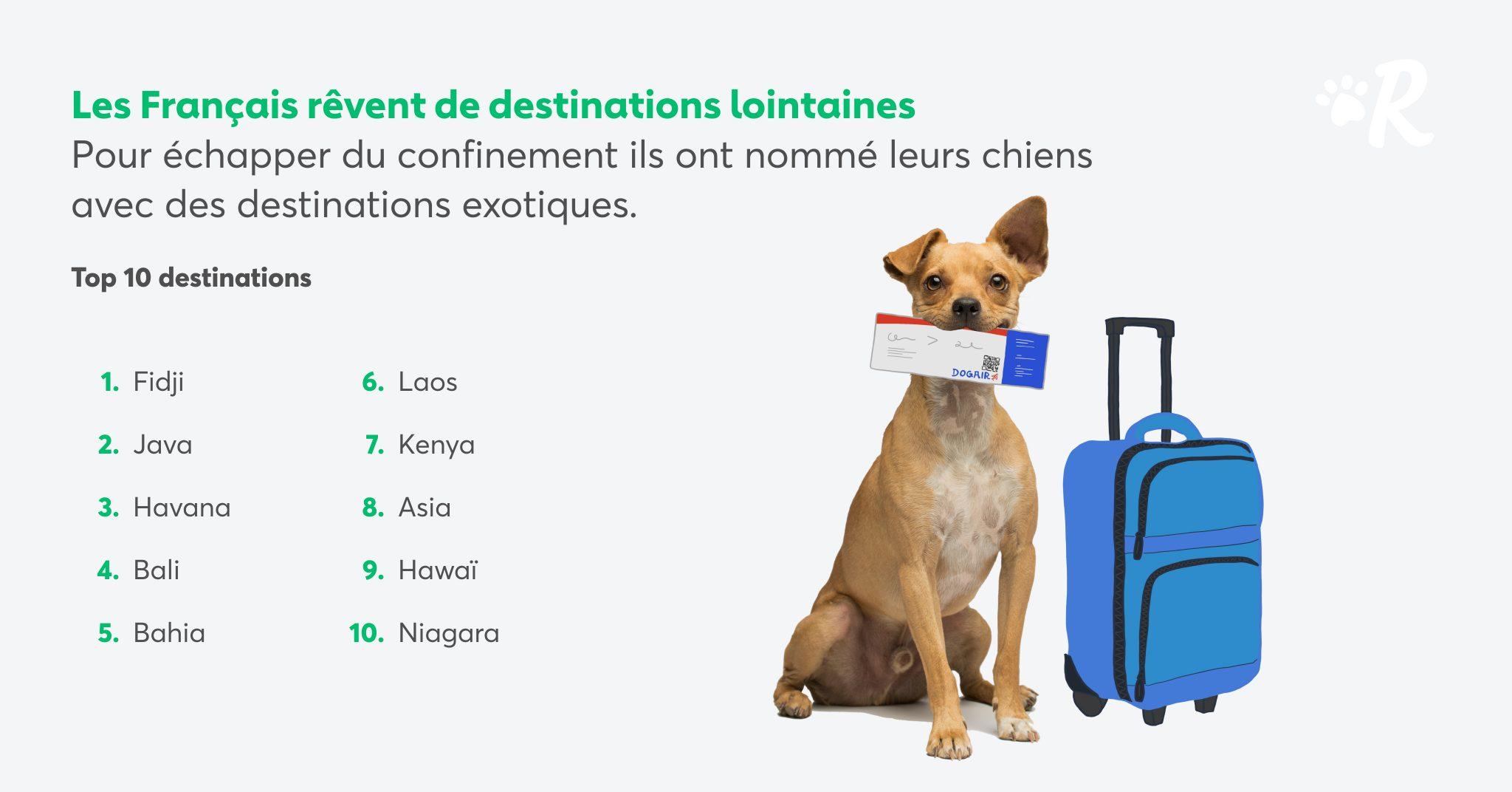noms de chiens de destinations