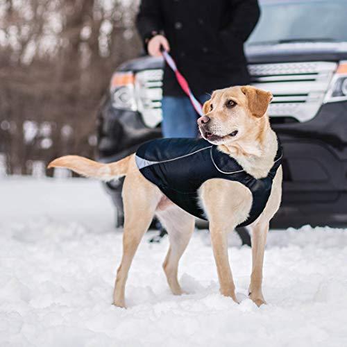 Kurgo North Country weatherproof dog jacket