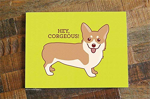 """Hey Corgeous!"" Card"