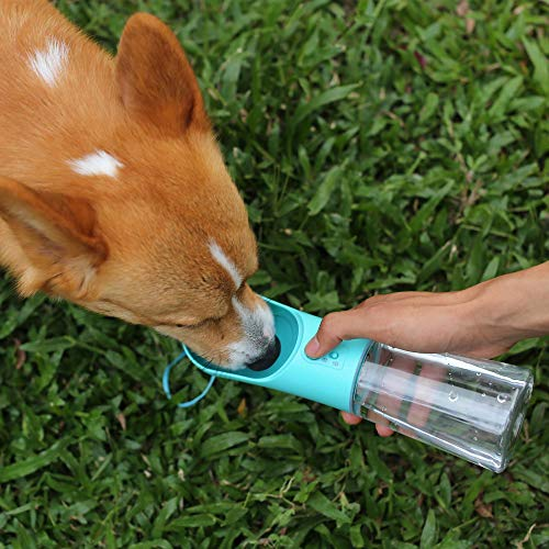 Upsky portable water bottle for running with your dog in spring