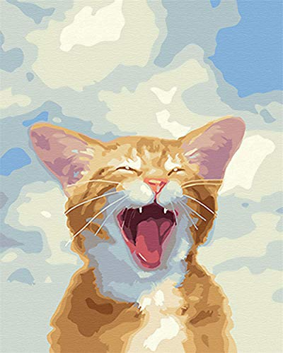 yawning orange cat paint-by-numbers kit