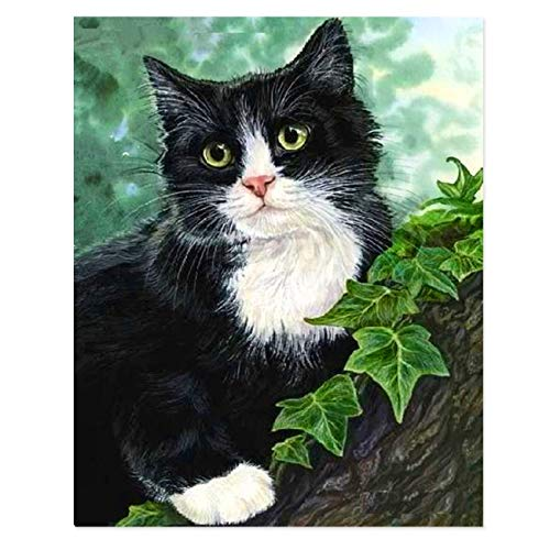 cat in a tree paint-by-numbers kit