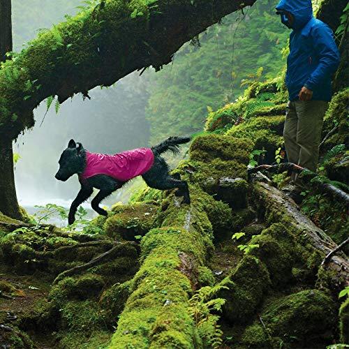 dog running in spring in Ruffwear Sun Shower lightweight waterproof jacket