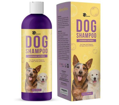 Honeydew Lavender Oatmeal Pet Shampoo