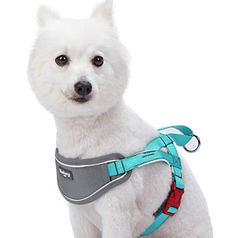 soft webbing guard harness for puppy Black and white dog harness mountains male dog harness personalized adjustable dog harness