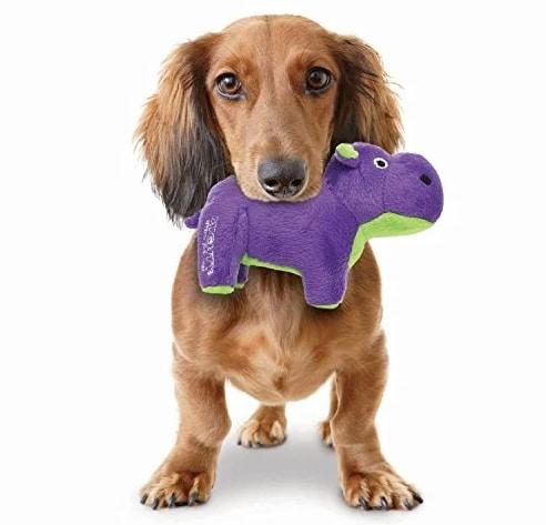 dog holding plush hippo toy