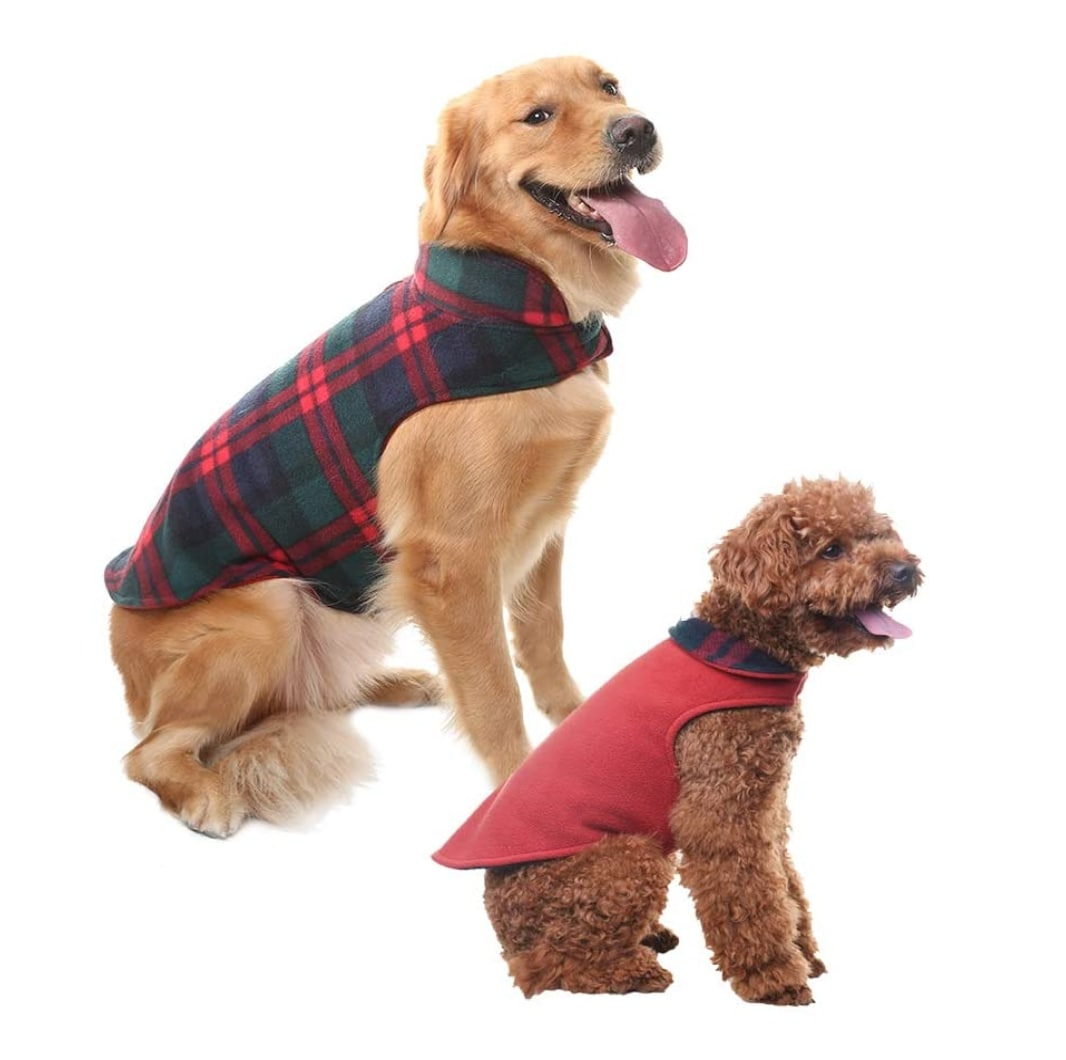 Scenereal Reversible Fleece Jacket