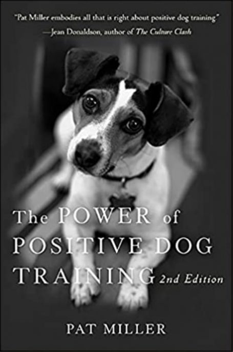 The power of active dog training