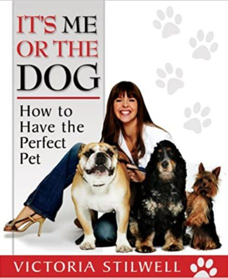 It's me or a dog: how to raise the perfect pet