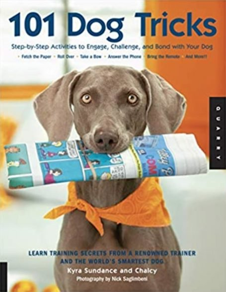 101 Dog Skills: Step-by-step activities for interacting with dogs, challenging and restraining