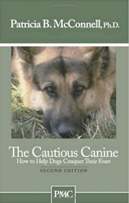 Cautious Dogs: How to Help Dogs Overcome Fear