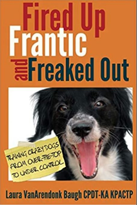 Fired, Crazy and Crazy: Train a mad dog from the top to under control