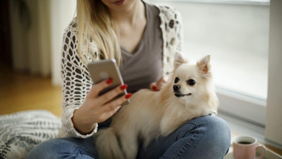 woman using dog app