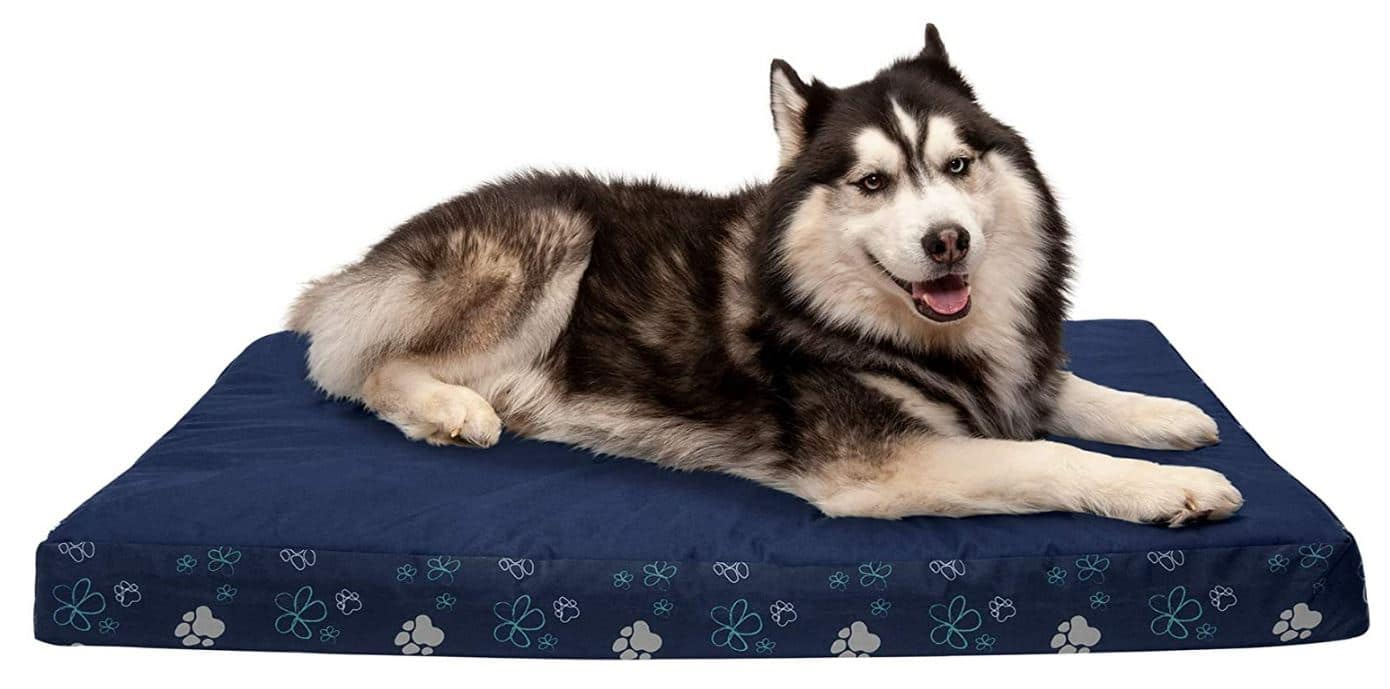 The Best Dog Beds on Amazon -- Furhaven