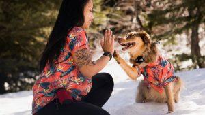 Dog Hawaiian Shirts Dog Threads Jungle Bird BBQ matching dog and family Hawaiian shirt