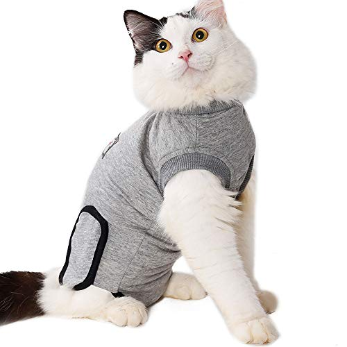 Tight gray knit cat recovery suit