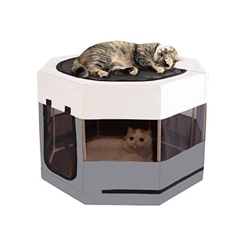Cats sit on an octagonal kitten playpen with wooden frame