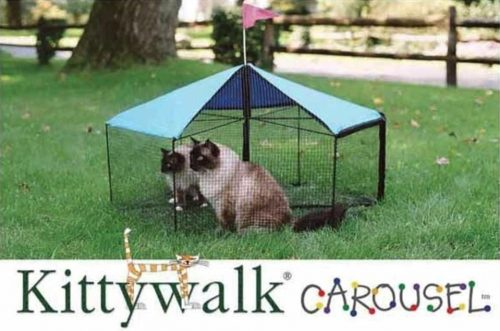 Cats sit in an outdoor carousel cage with tent roof