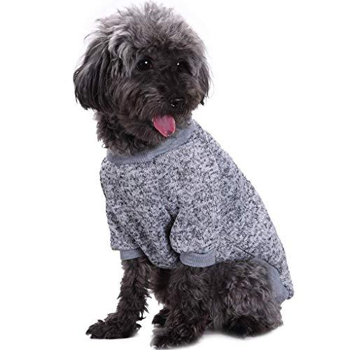 dog wearing cuffed gray mottled top