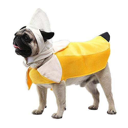 dog dressed as banana