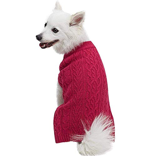 white dog wearing dark pink cable-knit sweater