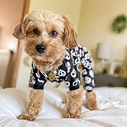 dog in skull-print onesie