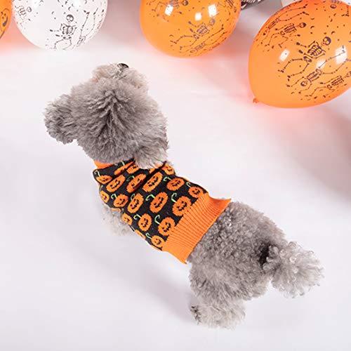 dog in pumpkin pattern turtleneck sweater